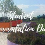 Lavender plants and trees in a garden photo, with text over image - Student Accommodation Dublin