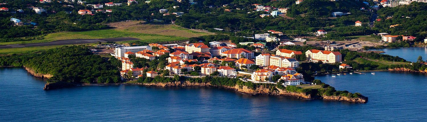 Aerial view of St Georges Grenada View